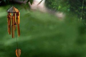Bạn đã biết cách treo chuông gió đúng chuẩn để thu hút nguồn năng lượng tốt?