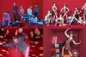 Fan nổi giận phản đối nhóm nhạc Trung Quốc vì 'đạo trắng trợn' ý tưởng của BTS