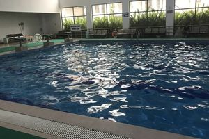 Trường THCS Lê Lợi (Hà Đông): Bể bơi nhà trường 'biến tướng' thành nơi kinh doanh kiếm lời?