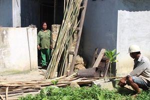 Người dân tái định cư hơn 10 năm 'khát' đất sản xuất