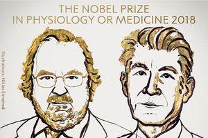 Giải Nobel Y học 2018: Hy vọng mới dành cho bệnh nhân ung thư