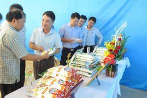 Nhà máy tinh bột Long Giang: Sản xuất 5.000 tấn tinh bột biến tính/năm
