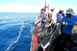 Để tàu cá đi đánh bắt trái phép ở vùng biển nước ngoài, kỷ luật người đứng đầu