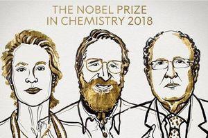 Nobel Hóa học 2018 vinh danh ba nhà khoa học tiến hóa