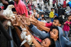Tình cảnh tuyệt vọng của người dân Indonesia sau động đất: 'Lúc này có tiền cũng vô dụng vì chẳng còn thứ gì để mua'