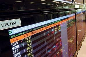 Chậm nộp báo cáo tài chính soát xét, 7 doanh nghiệp bị tạm dừng giao dịch