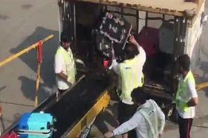 Phẫn nộ clip nhân viên sân bay quăng hành lý của khách như rác thải