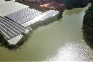 Lâm Đồng: Tạm giữ phương tiện san ủi trái phép tại hồ cấp nước sạch cho thành phố Đà Lạt