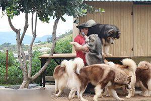 Thăm quan trang trại chó quý hàng tỷ đồng của 9x Đà Lạt
