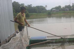 Lãi trăm triệu nhờ nuôi cá đặc sản