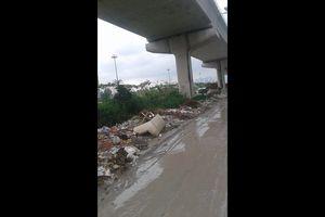 Những bãi rác khủng dưới gầm cầu đường sắt đô thị