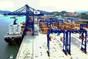 'Giật mình' vì phí dịch vụ cảng biển Việt Nam thấp nhất khu vực!