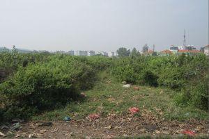 TP.HCM điều chỉnh quy hoạch khu dân cư Bình Trưng Đông