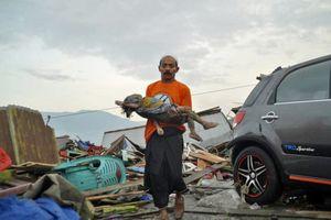 Đi tìm nguyên nhân gây thảm họa kép ở Indonesia và sức hủy diệt kinh hoàng khiến con số thương vong quá khủng khiếp