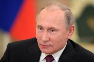 Tổng thống Putin: Không có chiến dịch quân sự lớn ở 'chảo lửa' Syria trong tương lai gần