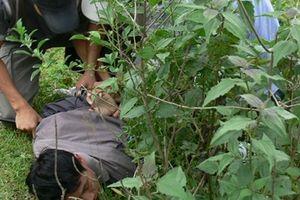 Truy bắt tội phạm nhiễm HIV, 2 cán bộ Công an bị thương