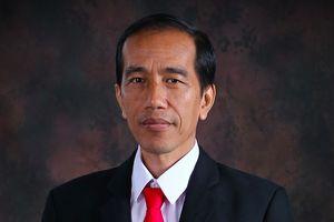 Tổng thống Indonesia chỉ đạo nỗ lực cứu hộ tại khu vực bị thiên tai