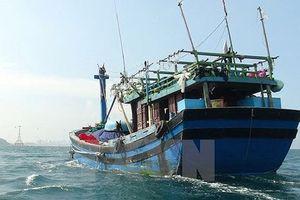 Tàu cá của ngư dân Đà Nẵng bị kẻ gian đánh cắp
