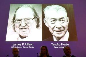 Đột phá điều trị ung thư đạt giải Nobel ứng dụng ở Việt Nam ra sao?