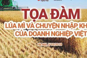 Chuyên gia, nhà quản lý, DN tìm cách gỡ khó cho nhập khẩu lúa mì