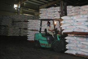 Chưa thể 'thu về một mối' việc kiểm tra thức ăn chăn nuôi, thủy sản nhập khẩu
