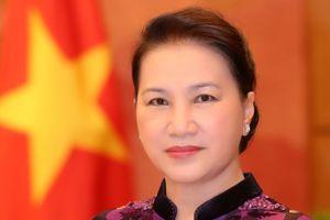 Nâng cao vai trò của ngoại giao nghị viện