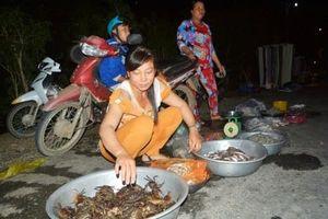 Chợ 'âm phủ' Tha La độc nhất vô nhị mùa nước nổi ở An Giang