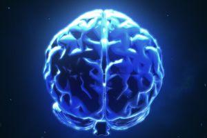 Kết nối và chia sẻ suy nghĩ qua não bộ nhờ khoa học