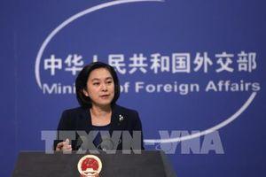 Trung Quốc bác cáo buộc của Mỹ về việc can thiệp bầu cử