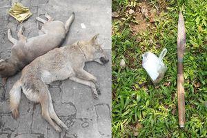 Đối tượng trộm chó dùng dao chống trả công an khi bị truy đuổi