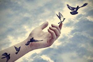 Sống trên đời hãy để niềm vui bắt nguồn từ những điều đơn sơ nhỏ bé