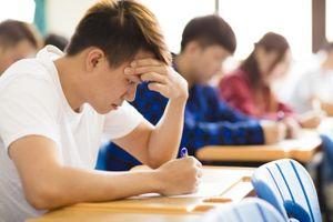 Du học (kỳ 3): Sai lầm của du học sinh châu Á