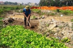 Thanh Hóa hỗ trợ khôi phục sản xuất sau mưa lũ