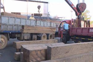 Tạm giữ 30 m3 gỗ không rõ nguồn gốc