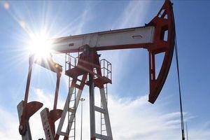 Giá dầu giảm xuống dưới 83 USD/thùng