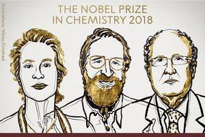 Nobel Hóa học 2018: Hướng đến hóa học xanh