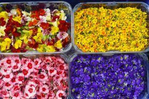 Hoa organic ăn được