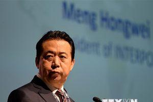 Ông Mạnh Hoành Vĩ đệ đơn từ chức, Interpol sắp có chủ tịch mới