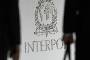 Vợ cựu Chủ tịch Interpol công bố tin nhắn bí ẩn trước khi chồng biến mất