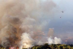 Bồ Đào Nha: Cháy rừng tại công viên tự nhiên Sintra-Cascais