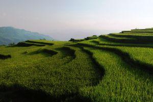 Tuyên Quang: Ngày hội văn hóa du lịch vùng cao Na Hang gắn với Liên hoan nghệ thuật quần chúng