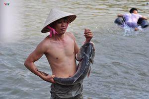 Thủy điện Trị An đóng cửa xả, dân đổ xô đi bắt cá 'khủng'