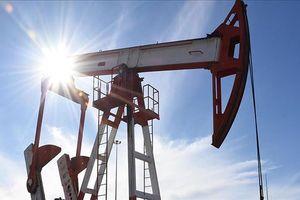 Xuất khẩu dầu của Iran giảm mạnh trong tuần đầu tháng 10
