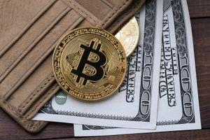 Giá Bitcoin hôm nay 8/10: Chuyên gia lý giải sự ổn định bất thường của Bitcoin