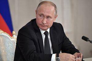 Tổng thống Putin thường làm gì vào ngày sinh nhật?