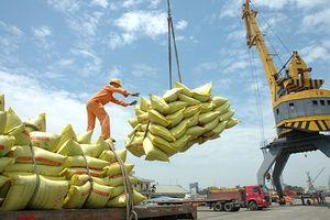 Trung Quốc đứng đầu thị trường xuất khẩu nông sản Việt Nam