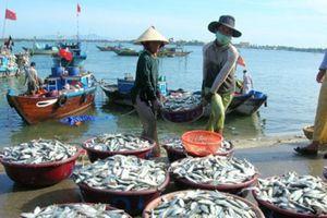 Nhiều dư địa phát triển tiêu thụ thị trường thủy sản nội địa