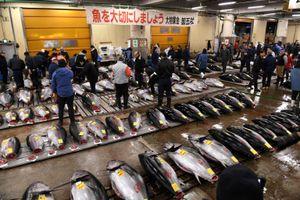 Dư vị quá khứ từ chợ cá lớn nhất thế giới