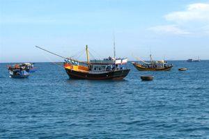 Quảng Bình: Hỗ trợ hơn 54,9 tỷ đồng khai thác hải sản vùng biển xa