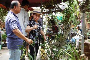 Độc đáo chợ phiên hoa lan